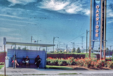 CVA 800 1989 - Oakridge sign and bus stop on Cambie south of 41st ave. Al Ingram photo, 1970.