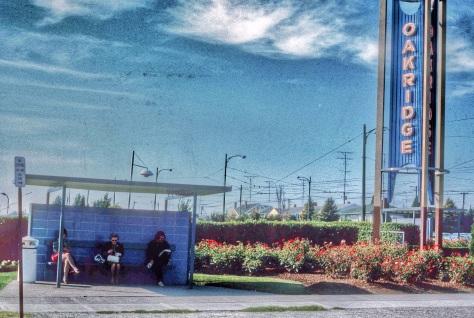 CVA 800 1989 - Oakridge sign and bus stop on Cambie south of 41st ave. Al Ingram photo, 1970.