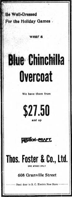 Chinchilla overcoat