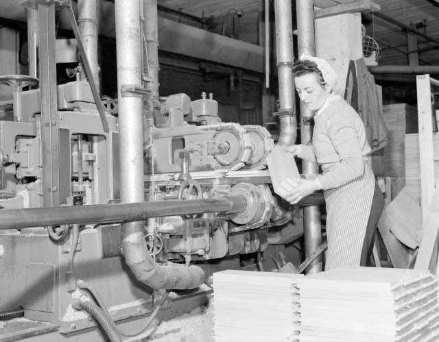 CVA 1184-1985 - [Woman cutting wood at Hammond Furniture] 1940-48 Jack Lindsay photo.