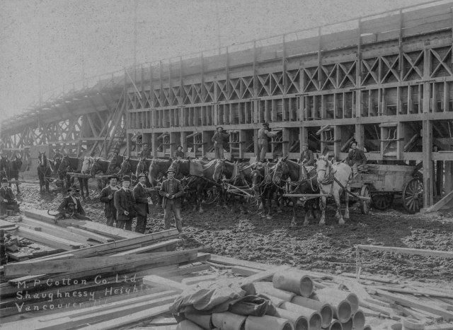 CVA 677-247 - M. P. Cotton Co. Ltd. [engineers and general contractors] - Shaughnessy Heights, Vancouver, B.C. - [construction crew and carts] 1911