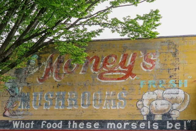 Money's Former Slogan-What Food These Morsels Be