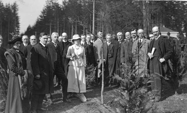 tr-p24-mrs-jonathan-rogers-plants-an-oak-to-commemorate-william-shakespeares-tercentary-near-pipeline-road-1916-frank-henry-gowen-photo